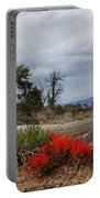 Beauty On 25 Mesa Panoramic Portable Battery Charger