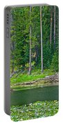 Beaver Dam In Heron Pond In Grand Teton National Park-wyoming Portable Battery Charger