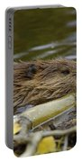 Beaver Portable Battery Charger