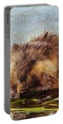 Beaver Portrait On Canvas Portable Battery Charger