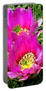 Beaver Tail Cactus Painting Portable Battery Charger