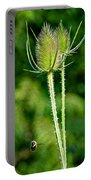 Bee And Teasel Portable Battery Charger