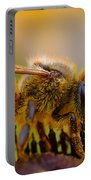 Bee Covered In Pollen Portable Battery Charger