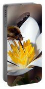 Bee Fly And Bloodroot Portable Battery Charger
