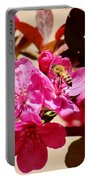 Bee On Pink Blossoms 031015aa Portable Battery Charger
