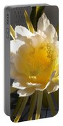 Bee Pollinating Dragon Fruit Blossom Portable Battery Charger