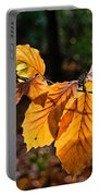 Beech Leaves In Winter Portable Battery Charger