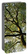 Beech Tree Canopy 2 Portable Battery Charger