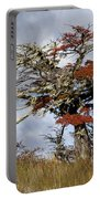 Beech Tree, Chile Portable Battery Charger