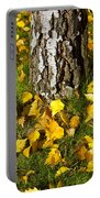 Beech Tree Portable Battery Charger