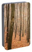 Beech Wood In Autumn Portable Battery Charger