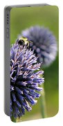 Bees On Globes Portable Battery Charger