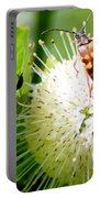 Beetle On Buttonbush Portable Battery Charger