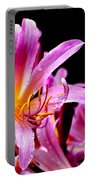 Belladonna Lilies Portable Battery Charger