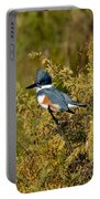Belted Kingfisher Female Portable Battery Charger