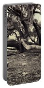 Bench And Trees Bw Portable Battery Charger