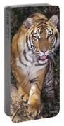 Bengal Tiger By Tree Endangered Species Wildlife Rescue Portable Battery Charger