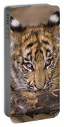 Bengal Tiger Cub And Peacock Feather Endangered Species Wildlife Rescue Portable Battery Charger