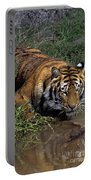 Bengal Tiger Drinking At Pond Endangered Species Wildlife Rescue Portable Battery Charger