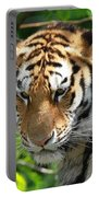 Bengal Tiger Portrait Portable Battery Charger