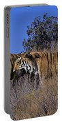 Bengal Tigers On A Grassy Hillside Endangered Species Wildlife Rescue Portable Battery Charger