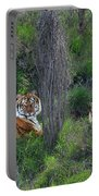 Bengal Tigers On Grassy Hillside Endangered Species Wildlife Rescue Portable Battery Charger