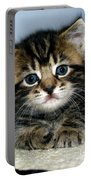 Benny The Kitten Resting Portable Battery Charger