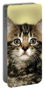 Benny The Pussy Cat Portable Battery Charger