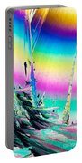 Benzoic Acid Microcrystals Coloful Abstract Art Portable Battery Charger