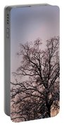 Bergen  Winter Tree Portable Battery Charger by Hakon Soreide
