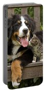 Bernese Mountain Puppy & Kitten Portable Battery Charger