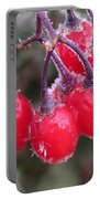 Berries In Ice Portable Battery Charger