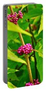 Berries Of Purple Portable Battery Charger