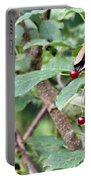 Berry Picker Portable Battery Charger