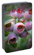 Berry Unripe Portable Battery Charger