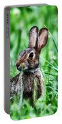 Better Get Started On Those Easter Eggs Portable Battery Charger