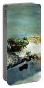 Between A Frog And A Hard Place Portable Battery Charger