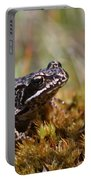 Beutiful Frog On The Moss Portable Battery Charger