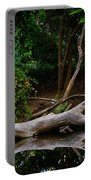 Bidwell Park Scene Portable Battery Charger
