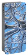 Bifurcations In White And Blue Portable Battery Charger