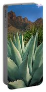 Big Bend Century Plant Portable Battery Charger