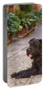 Big Black Schnauzer Dog In Italy Portable Battery Charger