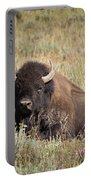 Big Buff - Bison - Buffalo - Yellowstone National Park - Wyoming Portable Battery Charger