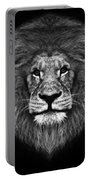 Big Cats 12 Portable Battery Charger
