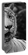 Big Cats 3 Portable Battery Charger
