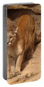 Big Cats Portable Battery Charger