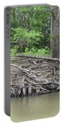 Big Cypress River Trees Portable Battery Charger