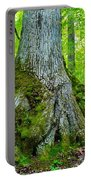 Big Foot Forest Portable Battery Charger