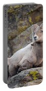 Big Horn Portable Battery Charger