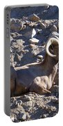 Big Horn Sheep Close Up Portable Battery Charger
